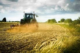 agricolt